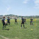 Pro Soccer Volley Net