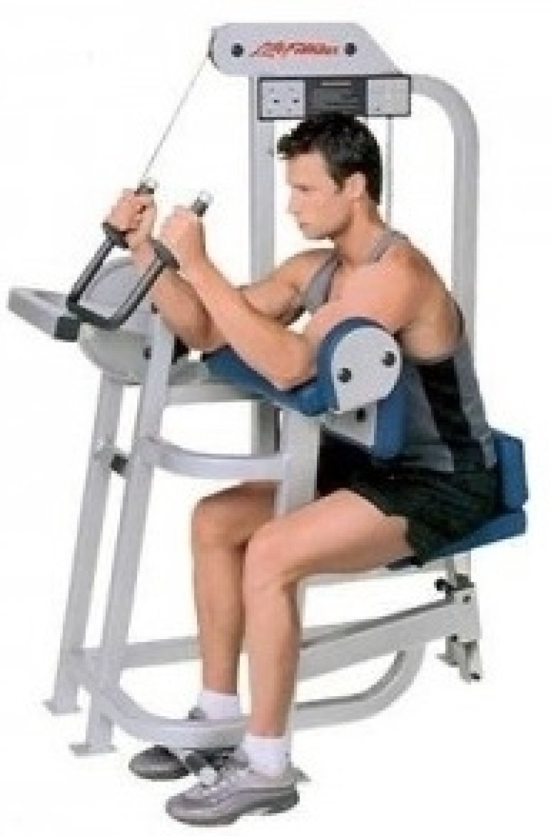 Life Fitness Pro 9000 Triceps Extension