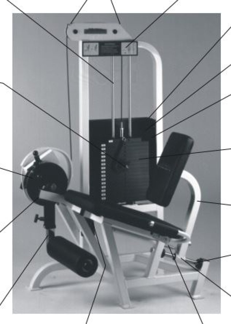Life Fitness Pro 9000 Leg Extension, refurbished, delivery in EU included.