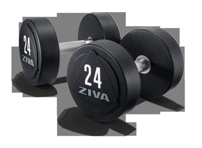 ZVO Solid Steel Rubber Dumbbells